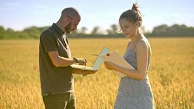Agronomists working in wheat field. Agriculture scientist using computer
