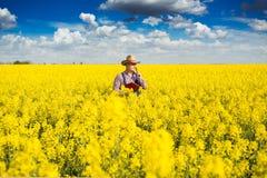 Agronomo che sta nel campo del seme di ravizzone coltivato di fioritura Fotografia Stock Libera da Diritti