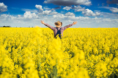 Agronomo che sta nel campo del seme di ravizzone coltivato di fioritura Immagine Stock Libera da Diritti