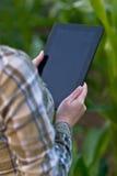 Agronomo con il computer della compressa nel campo di grano Fotografia Stock Libera da Diritti