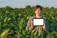 Agronomo con il computer della compressa nel campo di grano Fotografie Stock