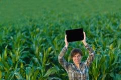 Agronomo con il computer della compressa nel campo di grano Fotografie Stock Libere da Diritti