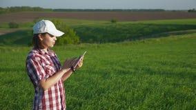 Agronomo della giovane donna nel campo con una compressa digitale stock footage