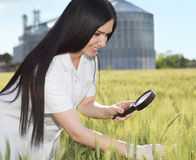 Agronomo nel campo con il silos dietro Fotografia Stock Libera da Diritti