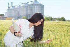 Agronomo nel campo con il silos dietro Immagini Stock