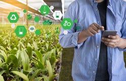 agronomo Using dell'uomo di concetto di tecnologia di agricoltura una compressa Int Immagine Stock