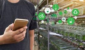 agronomo Using dell'uomo di concetto di tecnologia di agricoltura una compressa Int Fotografie Stock Libere da Diritti