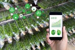 agronomo Using dell'uomo di concetto di tecnologia di agricoltura una compressa Int Fotografie Stock