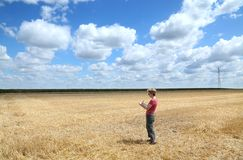 Agronomy. Agricultural expert inspecting wheat field after harvest royalty free stock photography