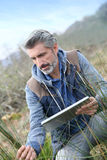 Agronomy researcher analysing vegetation Royalty Free Stock Image