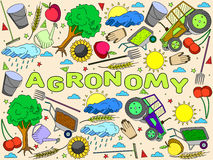 Agronomy vector illustration Stock Photography