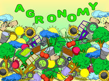 Agronomy vector illustration Stock Photos