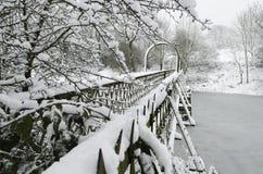 Dia de inverno 2 Imagem de Stock