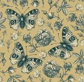 Agrostemma d'isolement réaliste sans couture de gravure de Rose Wallpaper Drawing de fond de vintage de fleurs de papillon de pao illustration de vecteur