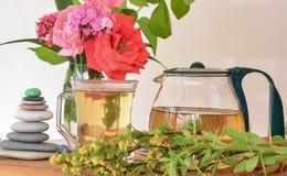 Agrostemma githago, Cockle herbata Zdjęcia Stock