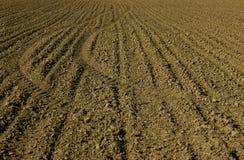 Agrotekhnologii sgangherato Fotografia Stock