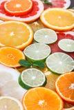 Agrume affettato: arance, mandarini, limoni, calce, tesoro, pompelmi, macro del primo piano della scopa della strega Fotografia Stock