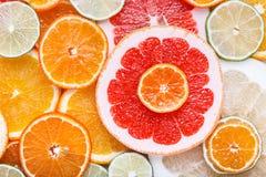 Agrume affettato: arance, mandarini, limoni, calce, tesoro, pompelmi, macro del primo piano della scopa della strega Fotografia Stock Libera da Diritti