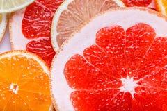 Agrume affettato: arance, mandarini, limoni, calce, tesoro, pompelmi, macro del primo piano della scopa della strega Immagine Stock Libera da Diritti