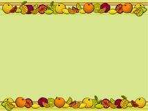 Agrume della frutta illustrazione di stock