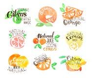 Agrume Juice Promo Signs Colorful Set di Fesh illustrazione vettoriale