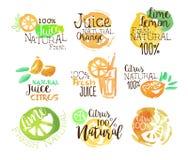 Agrume naturale Juice Promo Signs Colorful Set illustrazione vettoriale