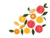 Agrumes d'isolement sur le fond blanc Agrumes d'isolement Morceaux de citron, de pamplemousse rose et d'orange d'isolement Photo stock