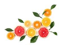 Agrumes d'isolement sur le fond blanc Agrumes d'isolement Morceaux de citron, de pamplemousse rose et d'orange d'isolement Photos libres de droits