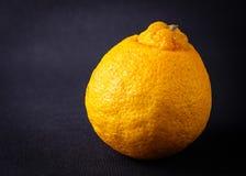 Agrumi arancio del mandarino Fotografie Stock