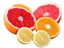 Agrumi: arancio, pompelmo e limone Immagine Stock