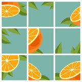 Agrumi arancioni Illustrazione di Stock