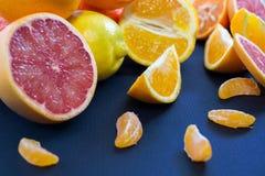 Agrumi colorati su un fondo blu scuro Fette di agrume e di buccia Citrus reticulata Citrus paradisi Citrus limon Immagine Stock Libera da Diritti