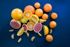Agrumi colorati su un fondo blu scuro Fette di agrume e di buccia Citrus reticulata Citrus paradisi Citrus limon Fotografie Stock Libere da Diritti