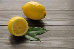 Agrumi del limone Fotografie Stock