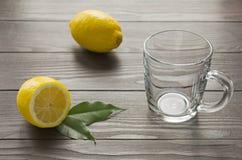 Agrumi del limone con la tazza vuota Immagini Stock Libere da Diritti