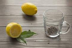 Agrumi del limone con la tazza vuota Fotografia Stock