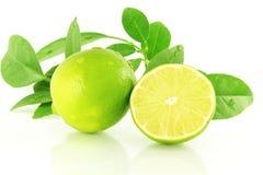 Agrumi freschi della calce del limone con le foglie nel fondo bianco Immagini Stock
