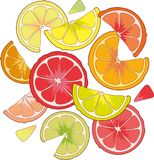 Agrumi in un vetro Calce del limone Fotografie Stock