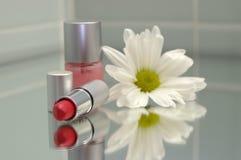 Agrupamento cosmético Imagem de Stock Royalty Free