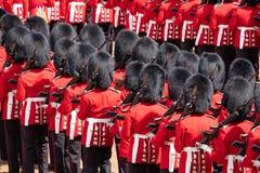Agrupando-se a cerim?nia da cor em protetores de cavalo desfile, Westminster, Londres Reino Unido, com os soldados da divis?o do  fotografia de stock
