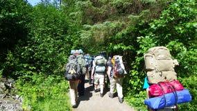 Agrupe hacer excursionismo a los caminantes dirigidos en el bosque imágenes de archivo libres de regalías