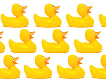 Agrupe los patos de goma de un amarillo aislados en un fondo blanco Fotografía de archivo