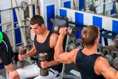 Agrupe os homens que trabalham seus braços com pesos no gym Fotografia de Stock Royalty Free