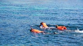 Agrupe os povos que mergulham ao nadar na água azul para ver peixes exóticos sob a água que veste revestimentos de vida alaranjad Foto de Stock Royalty Free