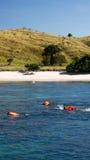 Agrupe os povos que mergulham ao nadar na água azul para ver peixes exóticos sob a água que veste revestimentos de vida alaranjad Imagem de Stock
