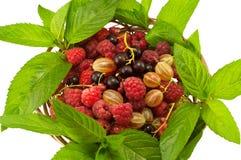 Agrus薄菏莓无核小葡萄干 免版税库存图片