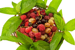 Agrus mint raspberry currant. In a basket isolated Royalty Free Stock Images