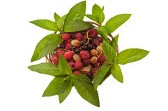 Agrus mint raspberry currant. In a basket isolated Royalty Free Stock Photography