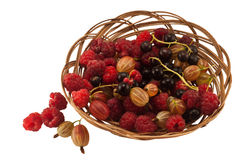Agrus raspberry currant. In a basket isolated Stock Photo