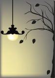 Agsinst de la lámpara un cielo nocturno Imagen de archivo